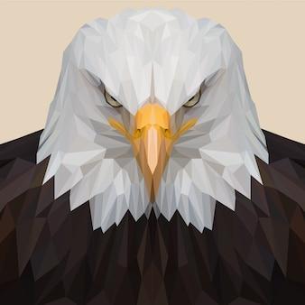 Águia americana lowpoly ilustração