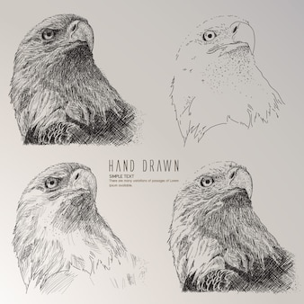 Águia, cabeça, mão, desenhado, cobrança