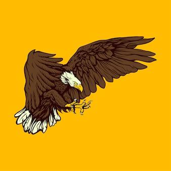 Águia voadora mão ilustrações desenhadas