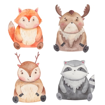Alce de animais, raposa, veado, ilustração em aquarela de guaxinim