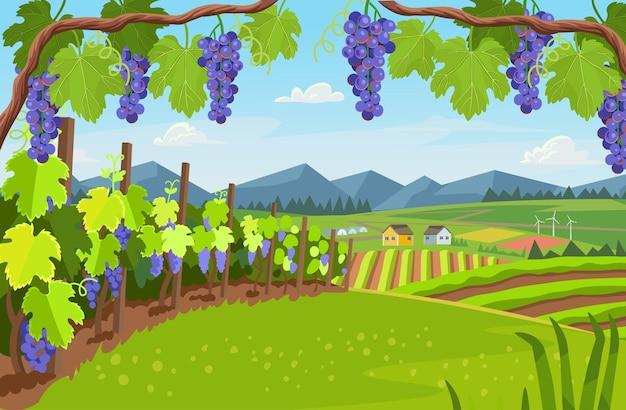 Aldeia de fundo com campos de estufas e uvas na paisagem de primeiro plano.