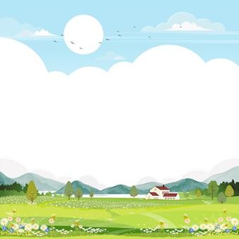 Aldeia de paisagem na primavera com campo e abelha coletando pólen em flores.