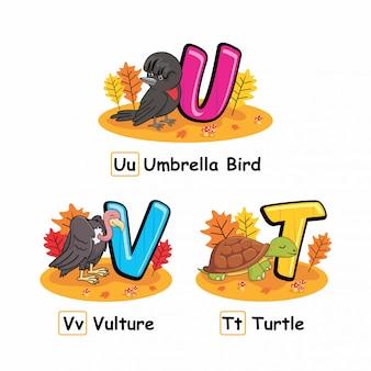 Alfabeto animais guarda chuva outono pássaro abutre tartaruga