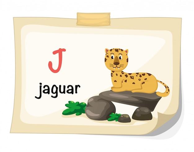 Alfabeto animal letra j para vetor de ilustração de onça-pintada