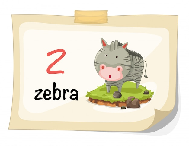 Alfabeto animal letra z para vetor de ilustração de zebra