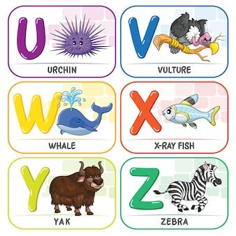 Alfabeto animal uvwxyz