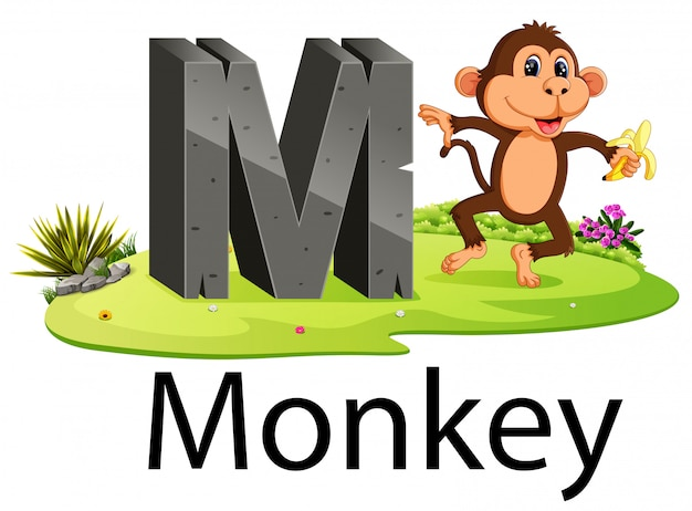 Alfabeto animal zoológico m para macaco com o animal bonito