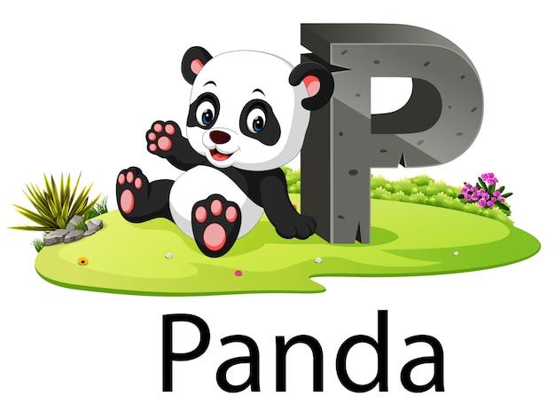 Alfabeto animal zoológico p para panda com o animal bonito