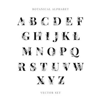 Alfabeto botânico letras maiúsculas vector set