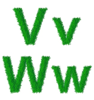 Alfabeto de grama verde, letras grandes e minúsculas v, w
