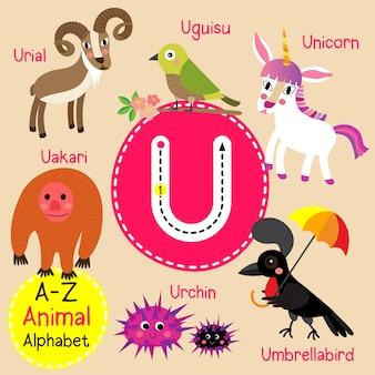 Alfabeto de jardim zoológico de letra u