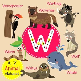 Alfabeto de zoológico de letra w