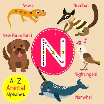 Alfabeto do jardim zoológico da letra n