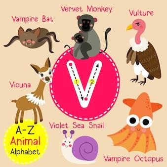 Alfabeto do jardim zoológico da letra v