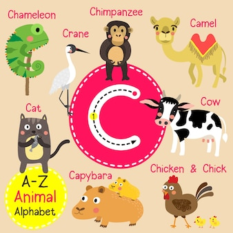 Alfabeto do zoológico de letra c