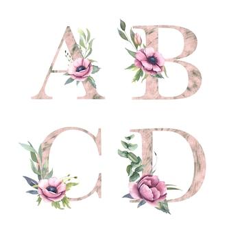 Alfabeto floral, coleção de cartas com flores em aquarela e folha verde. a, b, c, d.