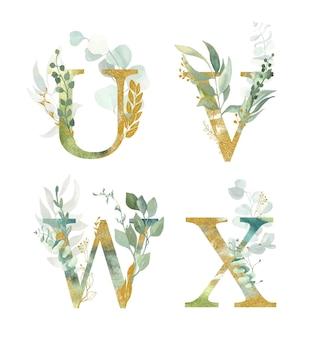 Alfabeto floral, letra u, v, w, x com aquarela verde e folha de ouro.