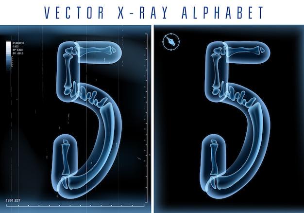 Alfabeto transparente de raio-x 3d usado em logotipo ou texto. número cinco 5