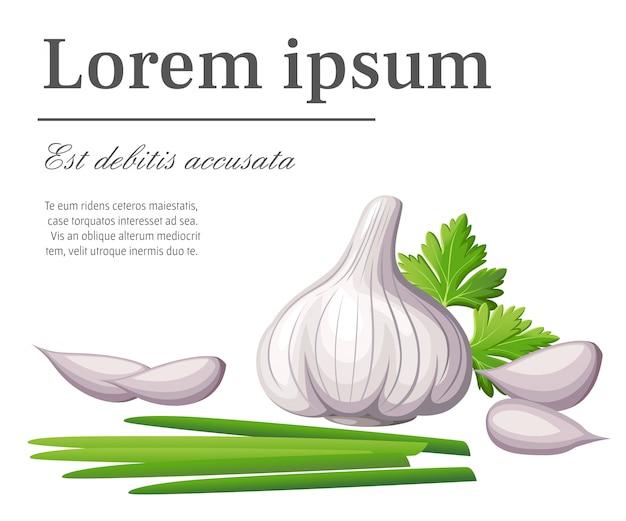 Alho branco fresco e pedaços de alho com brotos de vegetais da ilustração de alimentos orgânicos do jardim com lugar para o seu texto na página do site e aplicativo móvel com fundo branco
