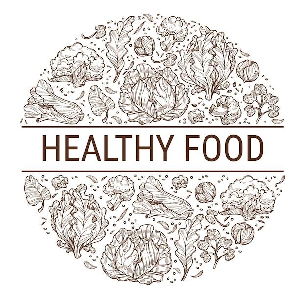 Alimentos orgânicos e saudáveis, comendo uma refeição crua limpa e deliciosa. ingredientes orgânicos, couve e folhas de salada, antioxidantes e minerais em hortaliças. contorno de esboço monocromático, vetor em estilo simples