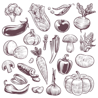 Alimentos saudáveis vegetais naturais