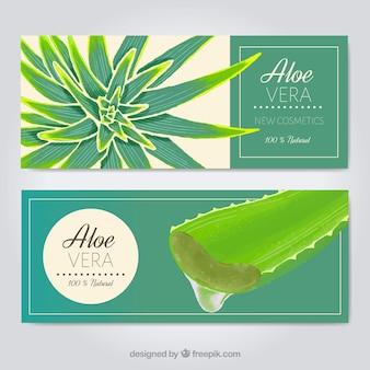 Aloe vera cosméticos banner