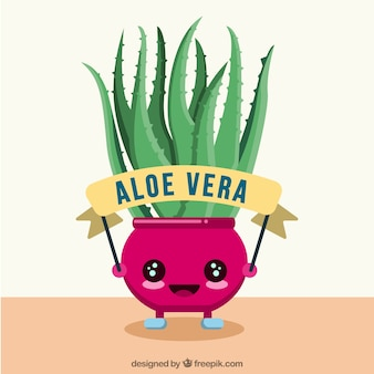 Aloe vera pot