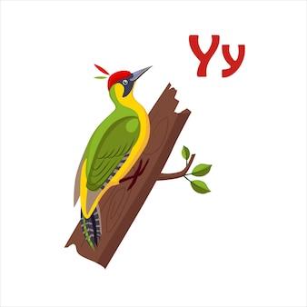Alvéola-amarela. alfabeto engraçado, ilustração em vetor de animais