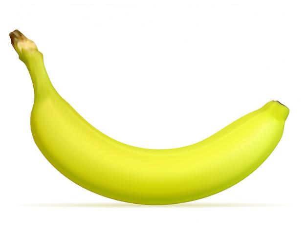 Amarelo maduro de banana e uma ilustração em vetor verde
