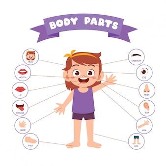Anatomia de parte do corpo feliz menina garoto bonito