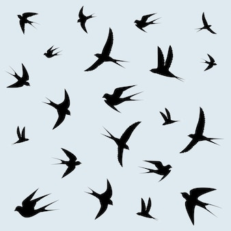 Andorinhas voando no céu