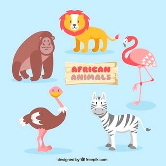 Animais africanos agradáveis
