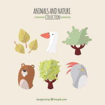 Animais agradáveis e set natureza