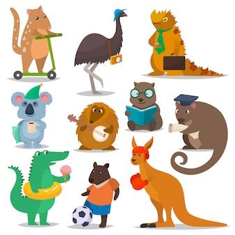 Animais australianos vector personagem animal dos desenhos animados na vida selvagem austrália canguru desportista ilustração de crocodilo coala