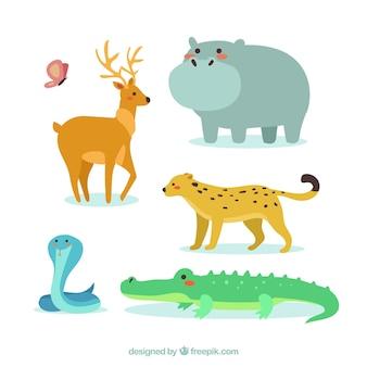 Animais bastante selvagens