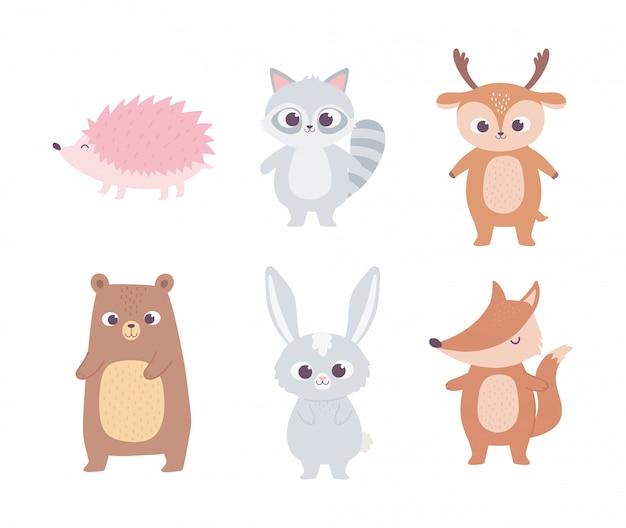 Animais bonito dos desenhos animados pequeno urso guaxinim veado coelho raposa e ouriço