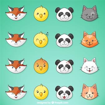 Animais bonitos com diferentes expressões faciais