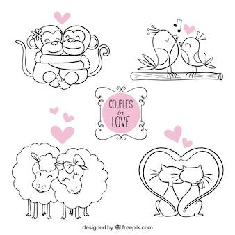 Animais casais apaixonados