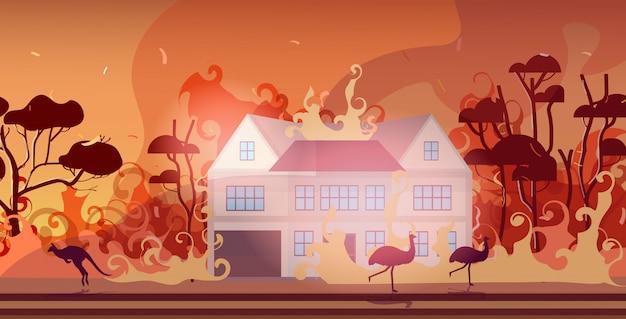 Animais correndo de incêndios florestais na austrália incêndio queima casas conceito de desastre natural intensas chamas laranja horizontais