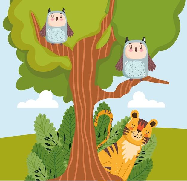 Animais corujas tigre árvore folhagem