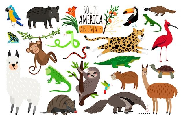 Animais da américa do sul.