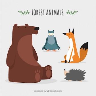Animais da floresta agradáveis e encantadores