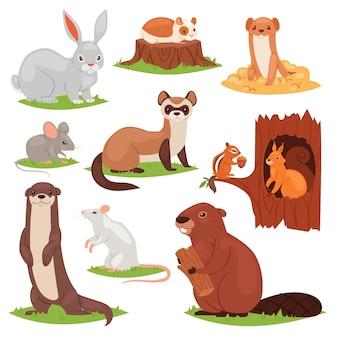 Animais da floresta cartum caracteres animalescos esquilo no castor oco e selvagem ou lebre de coelho na ilustração da floresta