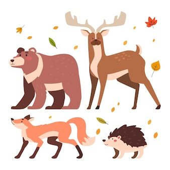 Animais da floresta de outono de design plano