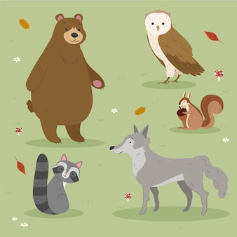 Animais da floresta de outono, desenho de design
