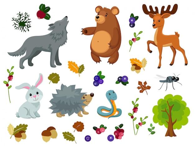 Animais da floresta.