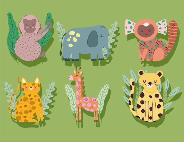 Animais da selva desenhados à mão com ilustração de desenhos animados engraçados