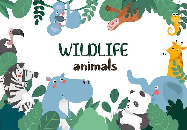 Animais da selva, moldura.