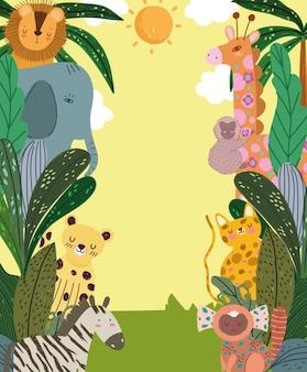 Animais da selva tropical