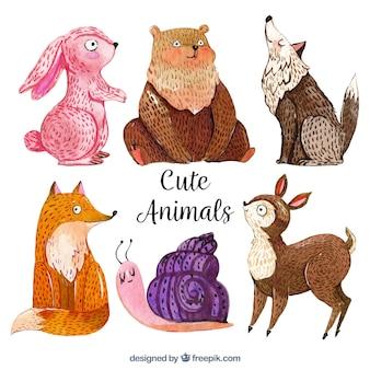Animais de aquarela com estilo divertido